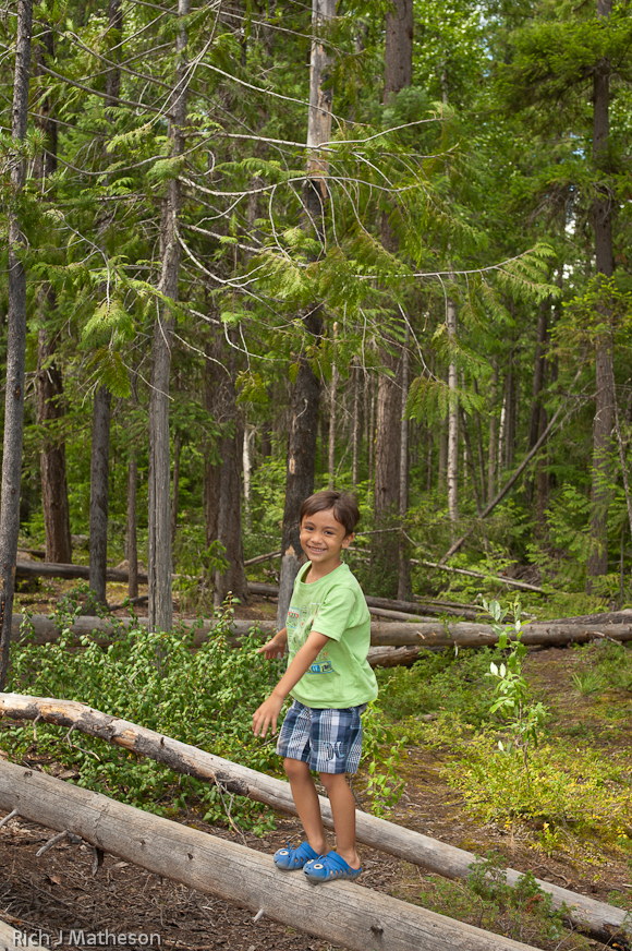 Vaji playing on a log near Helmcken Falls in Wells Gray Provincial Park, British Columbia, Canada